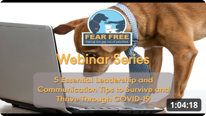 5 Essential Leadership and Communication Tips to Survive and Thrive Through COVID-19