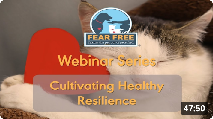 Cultivating Healthy Resilience
