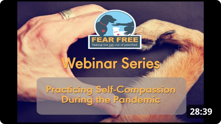 Practicing Self-Compassion During the Pandemic
