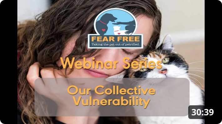 Our Collective Vulnerability