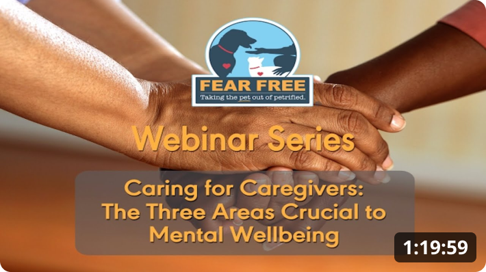 Caring for Caregivers: The Three Areas Crucial to Mental Wellbeing